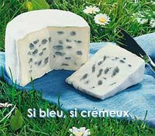 Queso francés Bleu de Bresse