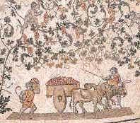 Imagen de vendimia en la Roma clásica
